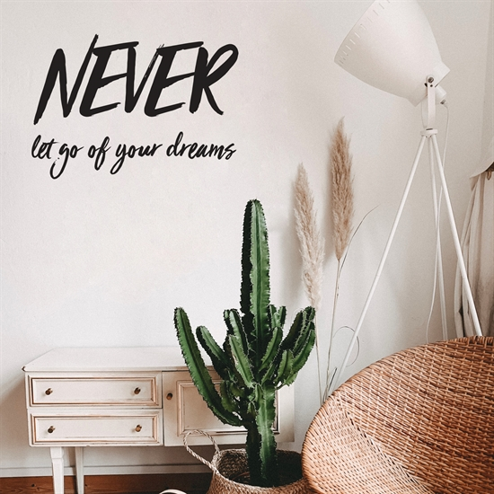 מדבקת קיר- NEVER let go of your dreams-1